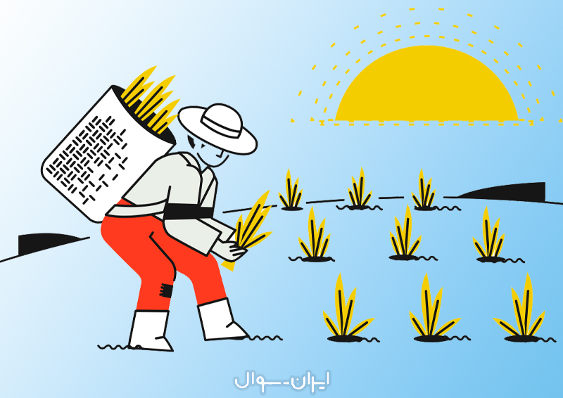 هنرآموز زراعی و باغی آموزش و پرورش